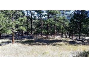 Photo of 300 Green Pine Ct, Estes Park, CO 80517 (MLS # 834843)