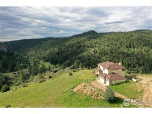Photo of 366 N Rim Rd, Livermore, CO 80536 (MLS # 864883)