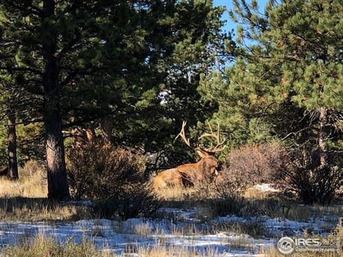 Photo of 380 Parkview Ln, Estes Park, CO 80517 (MLS # 928956)