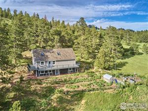 Photo of 1233 County Road 68, Nederland, CO 80466 (MLS # 885963)