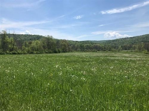 Photo of 0 Route 96, Spencer, NY 14883 (MLS # 405053)