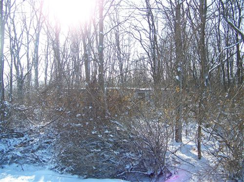 Photo of 0 Smith Vineyard, Romulus, NY 14541 (MLS # 401085)