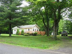 Photo of 279 BARNES HILL RD, Newfield, NY 14867 (MLS # 314160)