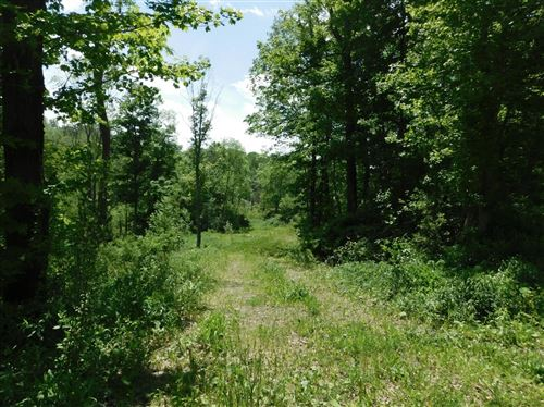 Photo of 0 Old Stage Road, Groton, NY 13073 (MLS # 402199)