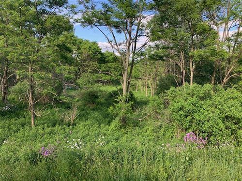 Photo of 0 Cecil Keane Road, Lot B, Slaterville Springs, NY 14817 (MLS # 402230)