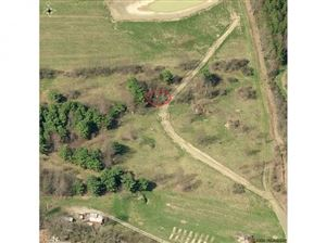 Photo of 0 0 State Route 96, Spencer, NY 14883 (MLS # 317352)