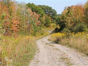 Photo of 0 0 Briggs Hill Lot 19 Road, Van Etten, NY 14889 (MLS # 317527)