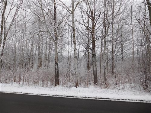 Photo of 0 Hollister (Midline) Rd., Freeville, NY 13068 (MLS # 403527)