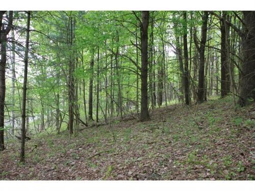 Photo of 0 0 Hornbrook (South Side) Road, Ithaca, NY 14850 (MLS # 403567)