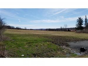 Photo of 00 Salt Rd, Groton, NY 13073 (MLS # 315607)