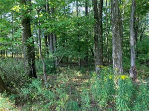 Photo of 0 Shaffer Road, Newfield, NY 14867 (MLS # 400612)