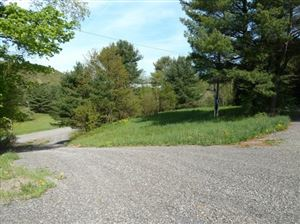 Photo of 805 Midline Road, Dryden, NY 13068 (MLS # 317613)