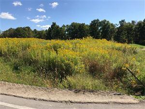 Photo of 0 Lot 10 Nor Way, Ithaca, NY 14850 (MLS # 400631)