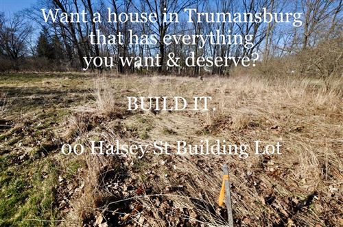 Photo of 0 00 Halsey Street, Trumansburg, NY 14886 (MLS # 401669)