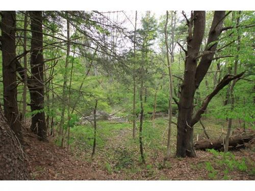 Photo of 0 0 HORNBROOK (North Side) Road, Ithaca, NY 14850 (MLS # 404700)