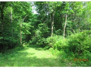 Photo of 0 BALD HILL ROAD, Danby, NY 14850 (MLS # 317717)
