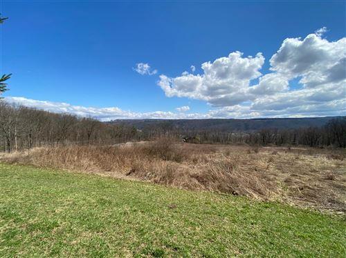 Photo of 311 Bostwick Road, Ithaca, NY 14850 (MLS # 401751)