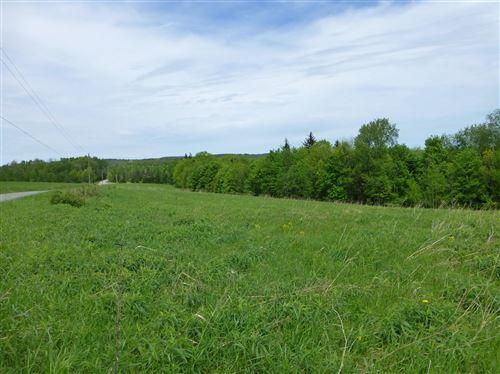 Photo of 0 Level Green Road, Berkshire, NY 13736 (MLS # 401805)