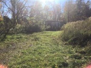 Photo of 8888 State Route 89, Interlaken, NY 14847 (MLS # 400825)