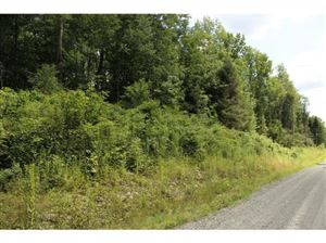 Photo of 0 00 Level Green Road, Caroline, NY 13736 (MLS # 317847)
