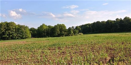 Photo of 0 Deans Creek Rd Road, Spencer, NY 14883 (MLS # 404901)