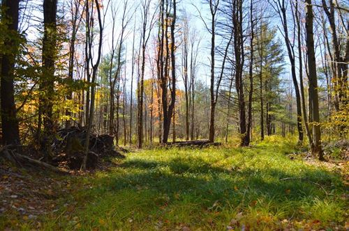 Photo of 0 00 Wood Road, Freeville, NY 13068 (MLS # 401924)
