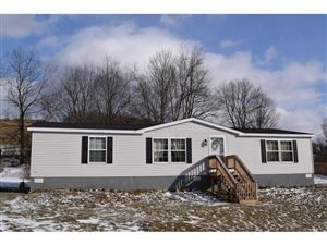 Photo of 1598 HALSEY VALLEY RD, Spencer, NY 14883 (MLS # 315941)