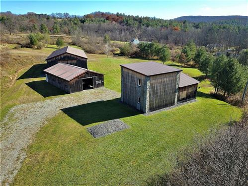 Photo of 144 Briggs Hill Rd, Nichols, NY 13812 (MLS # 400953)