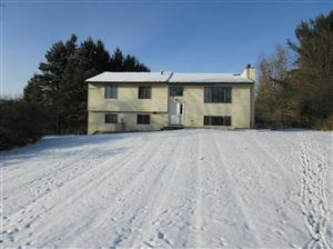 Photo of 108 Brook Drive, Ithaca, NY 14850 (MLS # 400955)