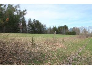 Photo of 0 COMFORT RD. - PARCEL B, Danby, NY 14850 (MLS # 316972)