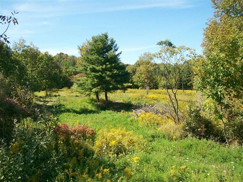 Photo of 216 Cass Hill Road, Candor, NY 13736 (MLS # 402976)