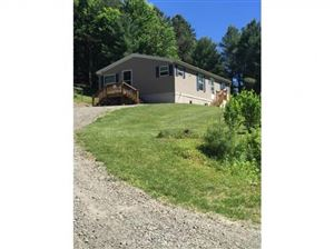 Photo of 485 CENTRAL CHAPEL RD, Brooktondale, NY 14817 (MLS # 314991)