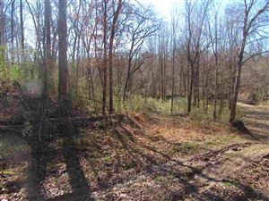 Photo of 00 RODNEY RD, Port Gibson, MS 39150 (MLS # 322091)