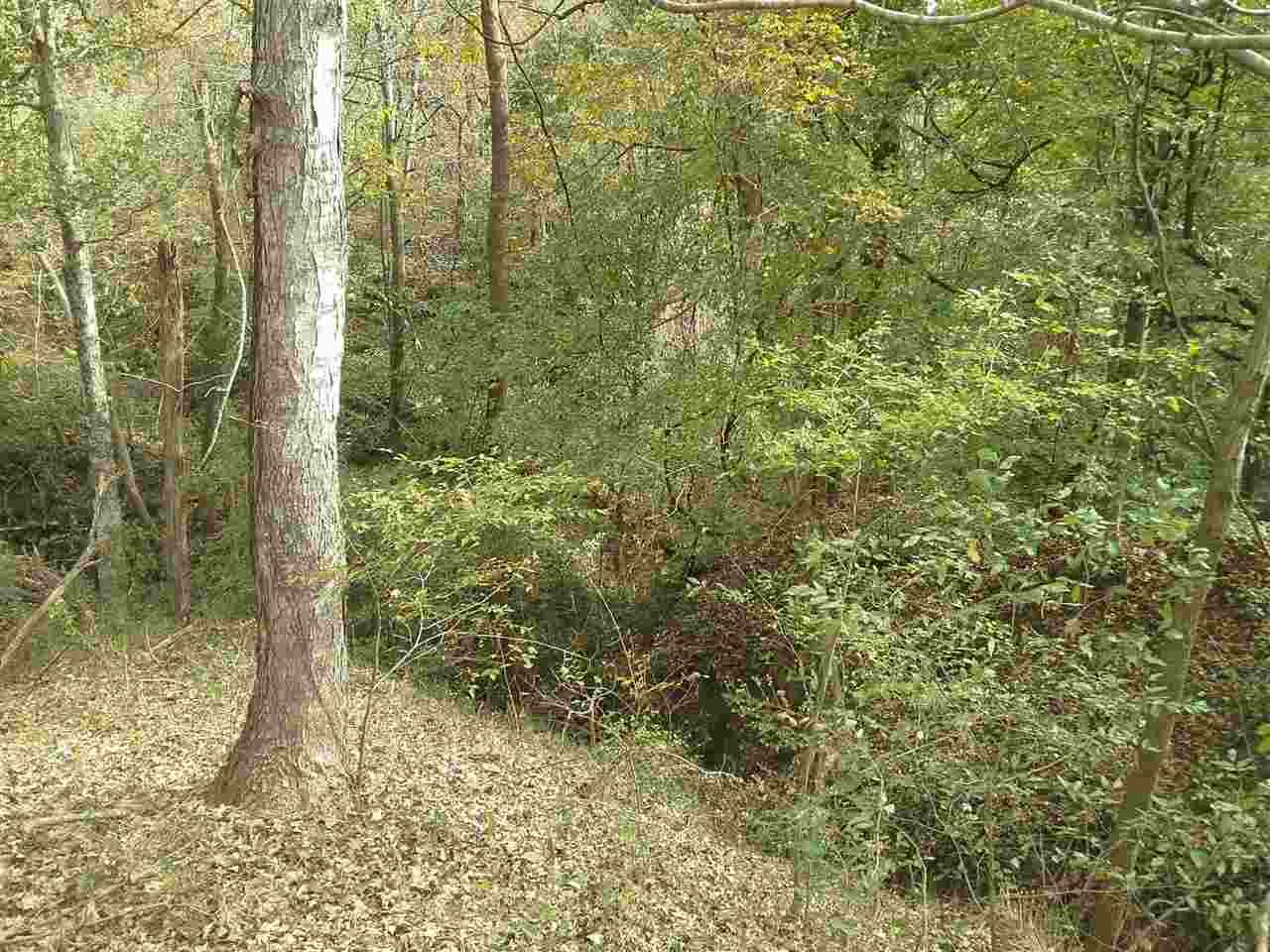 Photo for BELL RD, Yazoo City, MS 39194 (MLS # 303301)