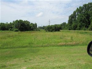 Photo of 1996 HIGHWAY 51, Madison, MS 39110 (MLS # 310361)