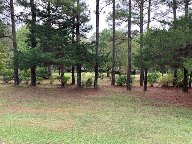 193 LAKESHIRE PKWY, Canton, MS 39046 - MLS#: 334371