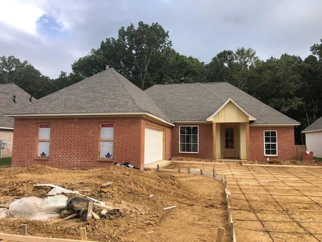 166 SHORE VIEW DR, Madison, MS 39110 - MLS#: 344490
