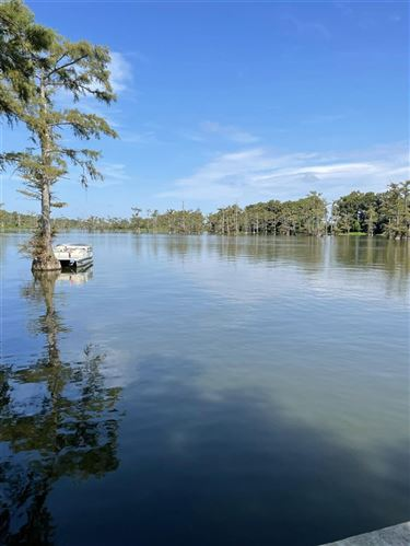 Photo of 577 B. M. SMITH RD, Tchula, MS 39169 (MLS # 343505)