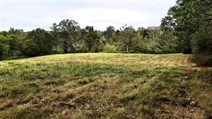 Photo of 10500 RD 123, Philadelphia, MS 39350 (MLS # 324857)