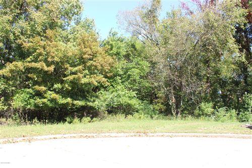 Photo of 225 JOE LANE, Jefferson City, MO 65101 (MLS # 10059199)