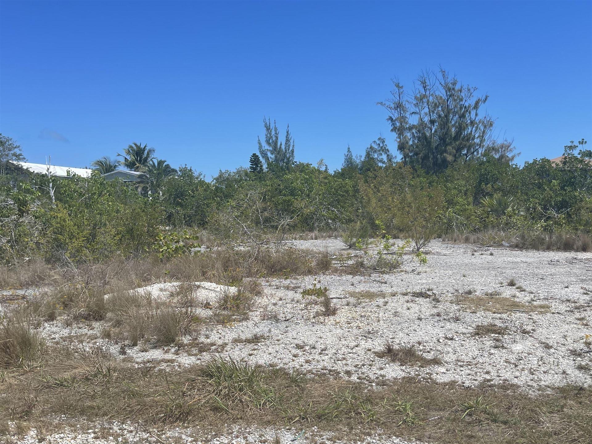 161 Horvath Road, Big Pine, FL 33043 - #: 595335