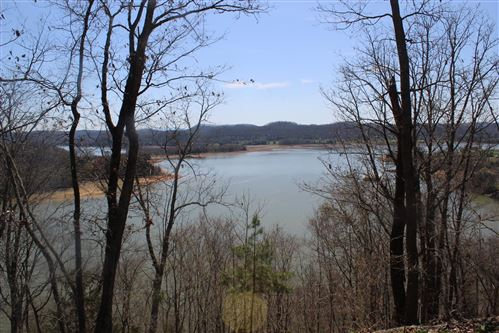 Photo of 841 Wilderness Drive, Mooresburg, TN 37811 (MLS # 1107000)