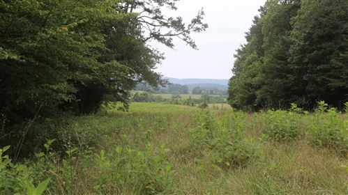 Photo of 42.98 Acre Mars Hill Road, Spring City, TN 37381 (MLS # 1163006)