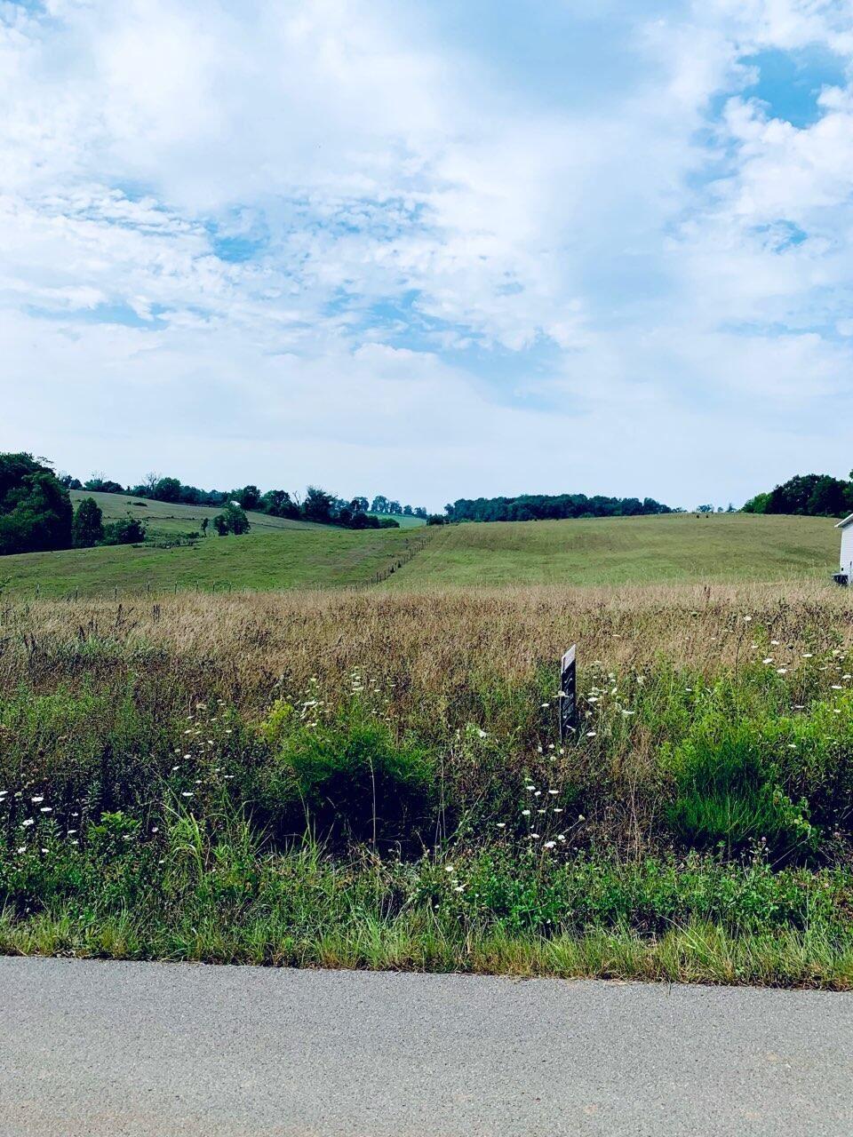 Photo of Lookout Drive, Rutledge, TN 37861 (MLS # 1161012)