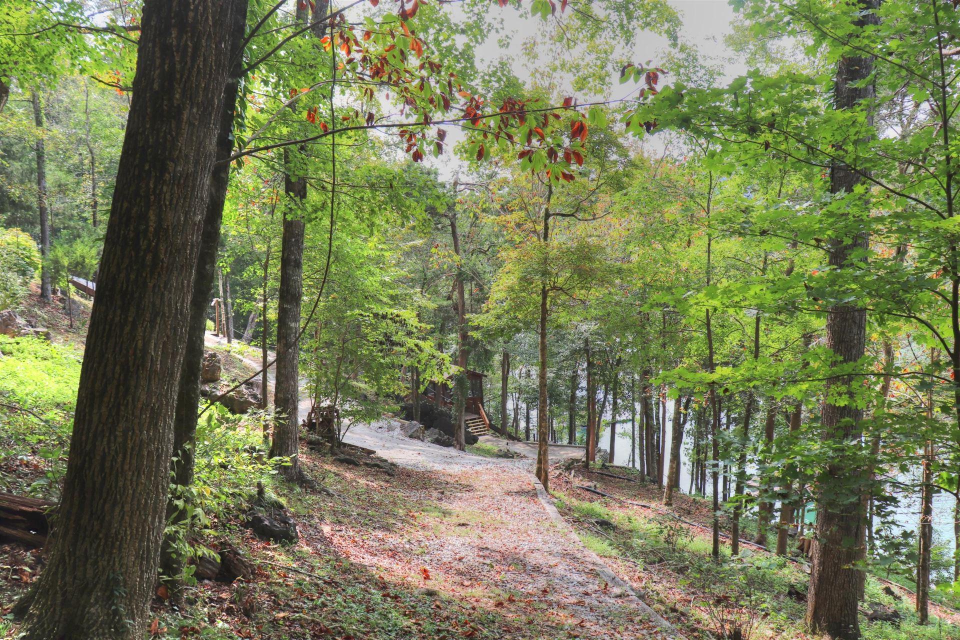 Photo for Lot 67 Fox Lake Lane, LaFollette, TN 37766 (MLS # 1130016)