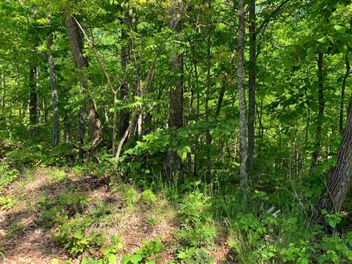 Photo of Shell Mtn Rd, Sevierville, TN 37876 (MLS # 1153032)