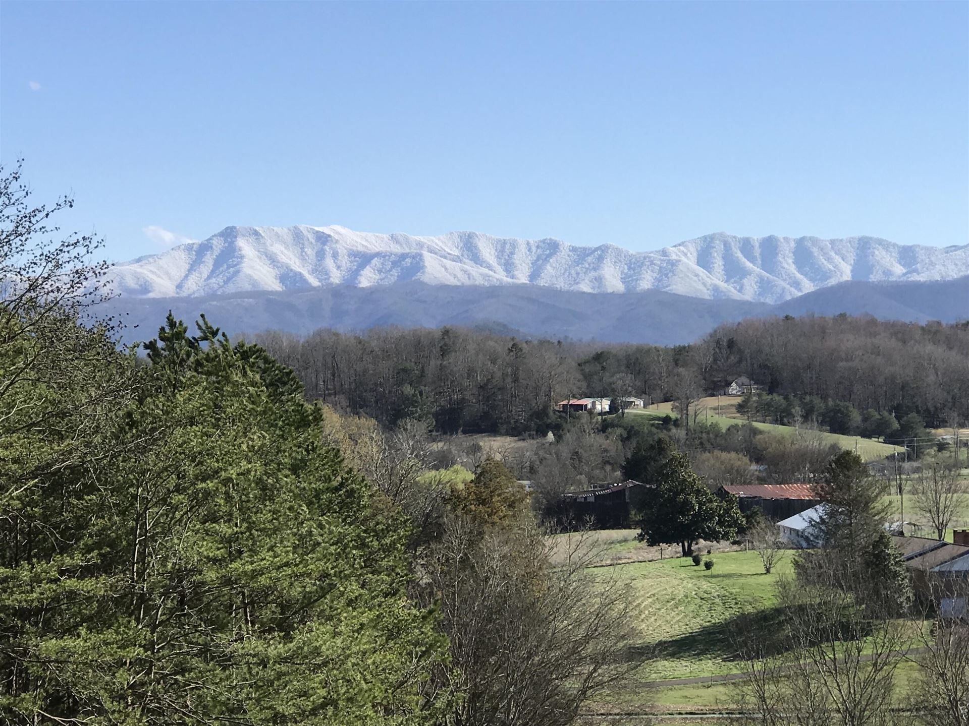 Photo of 957 English Mountain Rd, Cosby, TN 37722 (MLS # 1161032)
