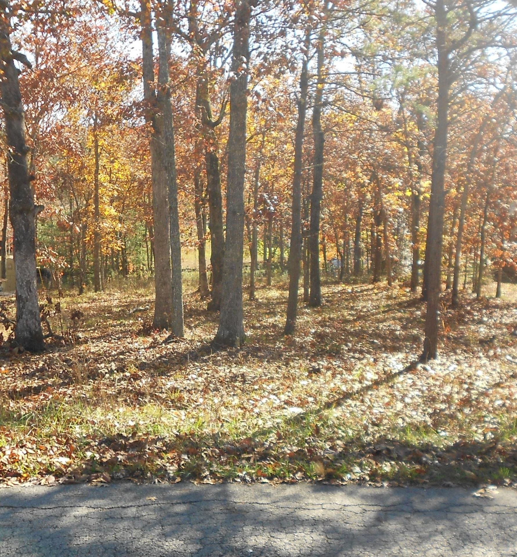 Photo for 8953 Cherokee Tr, Crossville, TN 38572 (MLS # 1099035)