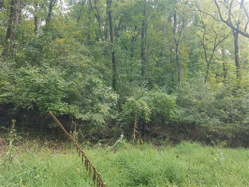 Photo of Delta Queen Rd, Louisville, TN 37777 (MLS # 1149036)