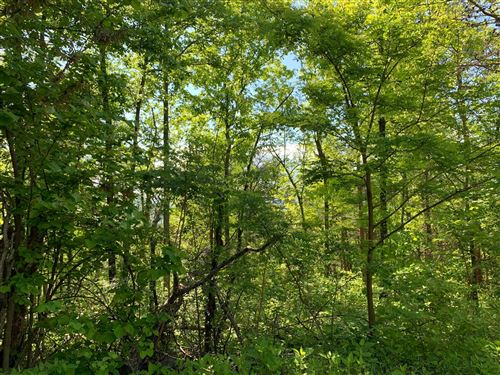 Photo of Shell Mtn Rd, Sevierville, TN 37876 (MLS # 1153036)